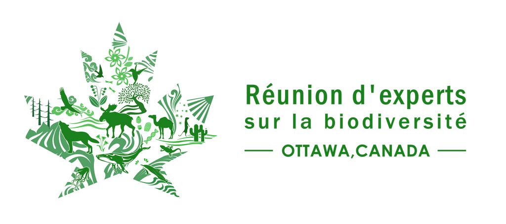 Logo représentant une feuille d'érable verte. Sur la feuille d'érable se trouve plusieurs images de plates et d'animaux. Il est spécifié : « Réunion d'experts sur la biodiversité – Ottawa, Canada »